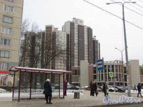 Малая Каштановая аллея, дом 9. Общий вид жилого комплекса «Радуга» от Будапештской улицы. Фото 15 февраля 2018 года.