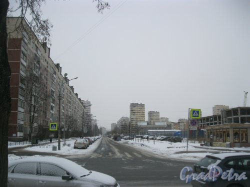 Поэтический бульвар. Вид от ул. Руднева в сторону ул. Сергея Есенина. Фото 27 февраля 2016 г.