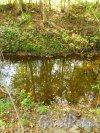 Река Лиговка на границе СНТ Дони (Пушкинский район) и СНТ Дони (Гатчинский район). Вид со стороны Пушкинского района на Гатчинский район. Фото 7 сентября 2014 года.