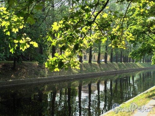 река Карповка в районе СПБ гос. медицинского университета им. И. П. Павлова. Фото июль 2010 г.