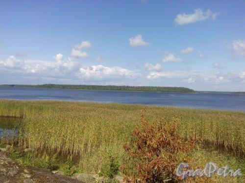 Вид на остров Долгунец с Майского острова. Фото 1 августа 2014 года.