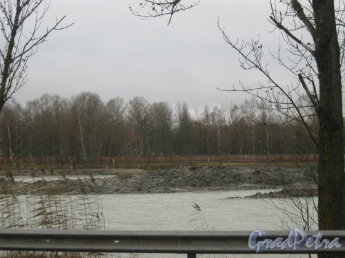 пос. Торики, Гореловское озеро. Очистка дна. Фото 4 ноября 2015 г.