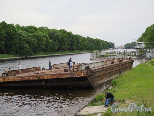 Река Большая Невка. Дебаркадеры на реке. фото июнь 2015 г.