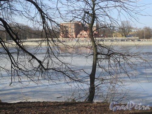 Река Большая Невка. Вид на Большую Невку и д. 14 по Примовскому пр. с наб. Каменного о-ва. фото март 2016 г.