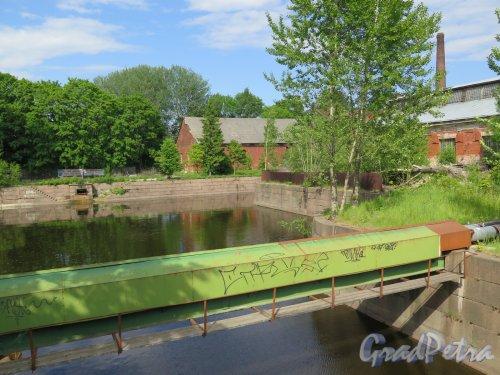 Обводный, канал (Кронштадт). Вид на поворотный Бассейн, слива Отводного канала и построек Канатного завода. фото июнь 2017 г.