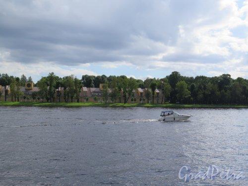 Река Большая Невка. Вид реки и Каменного острова из Новой деревни. фото август 2017 г.