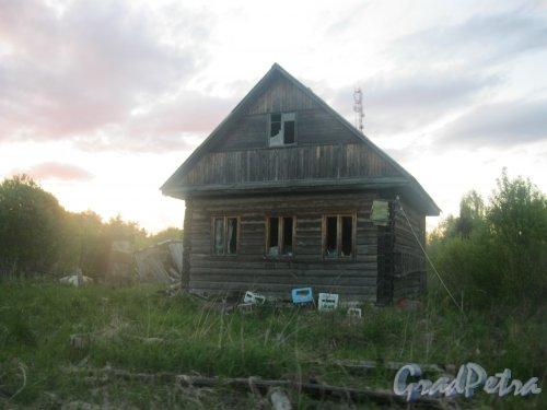 Лен. обл., Гатчинский р-н, пос. Сусанино, Вокзальная сторона, 8-я линия. Заброшенный дом в конце посёлка. Фото 24 мая 2015 г.