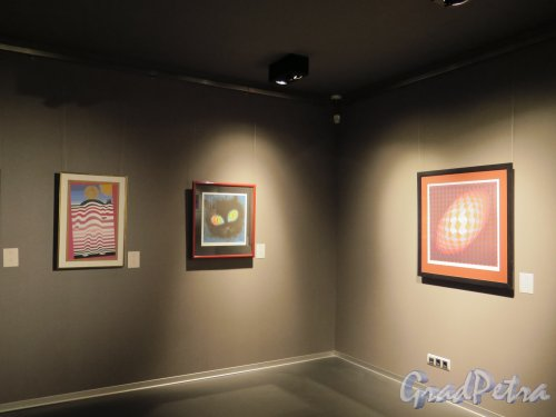 29-я линия В.О., д. 2. Галерея-Музей Эрарта. Интерьер Музея на Выставке Виктора Вазарелли. фото май 2015 г.