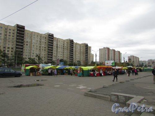 Стихийный сельскохозяйственный рынок у станции метро «Проспект Большевиков». Фото 1 октября 2015 года.
