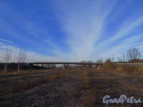 Общий вид Ташкентского путепровода в сторону Обводного канала. Фото 11 марта 2014 г.
