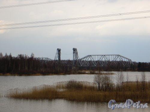 Кузьминский железнодорожный мост через Неву. Фото 13 апреля 2014 года.