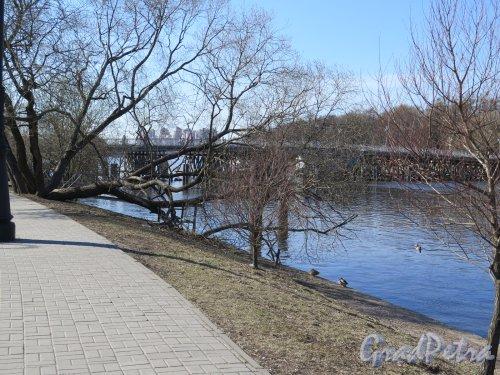 2-й Елагин мост. Общий вид моста с наб. Мартынова. фото апрель 2016 г.