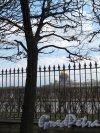 Университетская наб., д. 15. Сквер Меншиковского дворца. Вид из сквера на решетку, Неву и Исаакиевский собор. Фото апрель 2014 г.