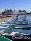 Наб. 40 лет Комсомола (Выборг), д. 3а. Лодочная станция. Пристань прокатные лодки. фото июнь 2016 г.