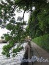 Наб. реки Фонтанки. Вид набережной в пределах Летнего Сада. фото июнь 2016 г.