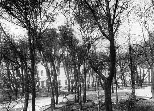 Часть сада при Екатерининском институте. Фото май 1908 года.