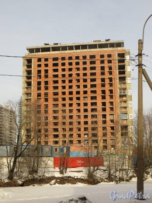 Ушаковская набережная, дом 3. Строительство корпуса ЖК «RIVERSIDE» со стороны набережной Черной речки. Фото 11 февраля 2015 года.
