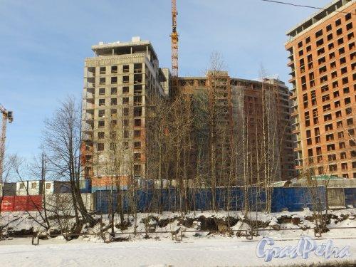 Ушаковская набережная, дом 3. Строительство корпусов «В1» и «Г5» ЖК «RIVERSIDE» со стороны набережной Чёрной речки. Фото 11 февраля 2015 года.