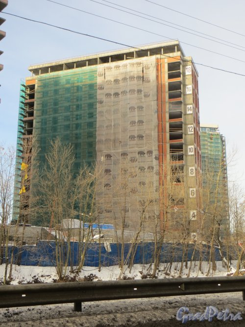 Ушаковская набережная, дом 3. Строительство корпуса «Г4» ЖК «RIVERSIDE» со стороны набережной Чёрной речки. Фото 11 февраля 2015 года.