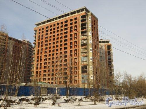 Ушаковская набережная, дом 3. Строительство корпуса «Г5» ЖК «RIVERSIDE» со стороны набережной Чёрной речки. Фото 11 февраля 2015 года.