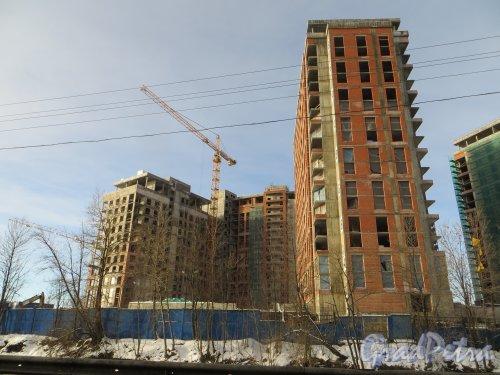 Ушаковская набережная, дом 3. Строительство корпусов «В1» (левый) и «Г5» (правый) жилого комплекса «Riverside» со стороны набережной Чёрной речки. Фото 11 февраля 2015 года.