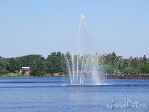 Наб. 40 лет Комсомола наб. (Выборг). Вид с набережной на плавающий фонтан, открыт в 2006, разработчик компания «Аквадрил». фото июнь 2016 г.