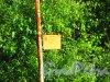 Ленинградская обл., Кингисеппский район, деревня Хаболово. Автобусная остановка маршрута № 75. Фото 13 июня 2016 года.