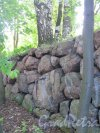 г. Выборг. Восточно-Выборгские укрепления. Батарейная гора. Кладка стенки редута. фото июнь 2016 г.