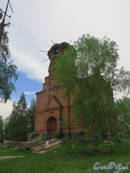 деревня Морье. Церковь Петра Афонского и Ольги Равноапостольной. Фото 25 мая 2014 года.