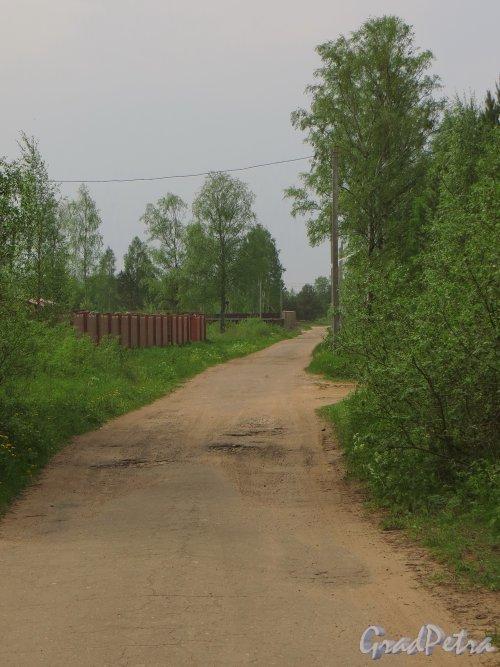 деревня Морье. Дорога от побережья Ладожского озера в сторону нового коттеджного поселка. Фото 25 мая 2014 года.