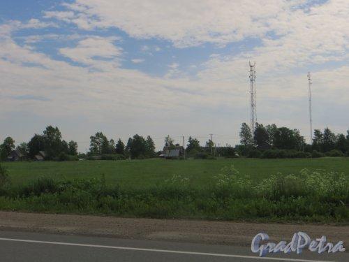 Ленинградская область, Лужский район. Вид на деревню Долговка с трассы Р-23 «Псков». Фото 7 июня 2014 года.