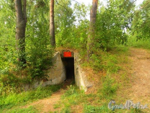 Форт Красная Горка. Памятник истории «Артиллерийский дворик 130мм батареи». Фото 9 августа 2014 года.