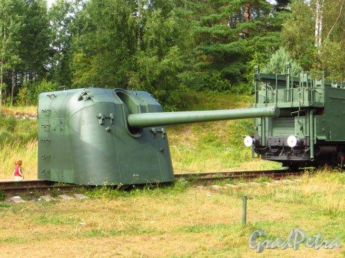 Форт Красная Горка. Орудие. Фото 9 августа 2014 года.