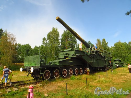 Форт Красная Горка. 305 мм орудие на железнодорожном транспортёре. Общий вид. Фото 9 августа 2014 года.
