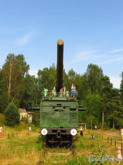 Форт Красная Горка. 305 мм орудие на железнодорожном транспортёре. Вид сбоку. Фото 9 августа 2014 года.