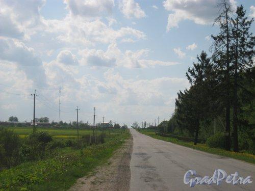 Лен. обл., Тосненский р-н, деревня Поги. Шоссе Поги-Тосно. Вид в сторону деревни Поги. Фото 21 мая 2014 г.