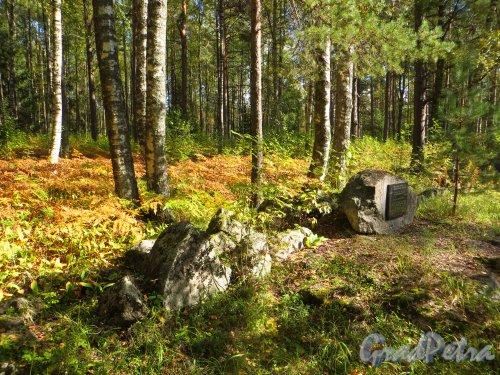 Ленинградская область, Выборгский район, поселок Вещёво. место Миконмяки кладбища в Хейнйоки. Фото 6 сентября 2014 года.
