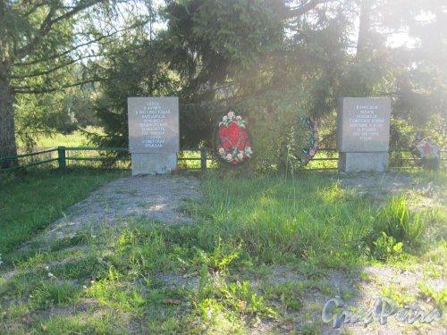 Лен. обл., Гатчинский р-н, дер. Каушта. Военный мемориал. Общий вид. Фото 16 сентября 2014 г.