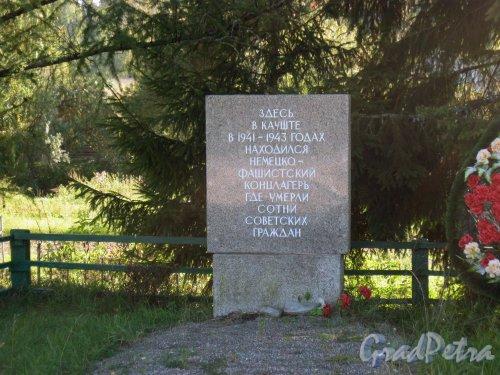 Лен. обл., Гатчинский р-н, дер. Каушта. Военный мемориал. Один из мемориальных камней. Фото 16 сентября 2014 г.