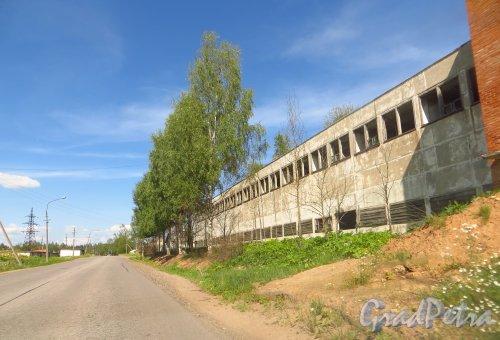 Заброшенные строения при въезде в деревню Белогорка со стороны деревни Изора. Фото 2 августа 2014 года.