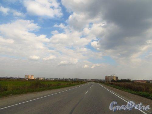 Ленинградская область, Тосненский район, город Никольское. Вид на город со стороны Никольского шоссе и деревни Мишкино. Фото 19 сентября 2014 года.