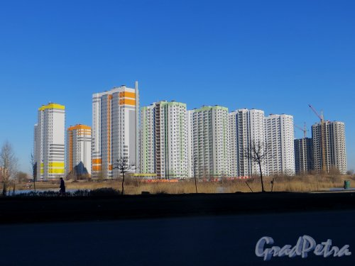 Жилой комплекс «София». Общий вид со стороны улицы Димитрова. Фото 15 марта 2015 года.