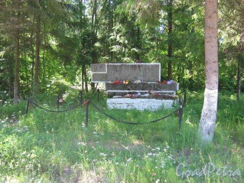 Лен. обл., Ломоносовский р-н, пос. Гостилицы (4 км северо-западнее). Памятник у шоссе А-120. Фото 28 июня 2012 г.