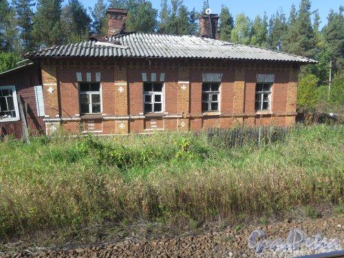 г. Луга, железнодорожная станция «Луга-1», вспомогательные постройки. Общий вид. Фото Сентябрь 2014 г.