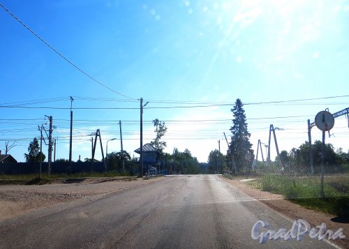 Железнодорожный переезд станции Возрождение участка Выборг-Каменогорск на ПК 229+44 20 в Выборгском районе Ленинградской области. Фото 4 июля 2015 года.
