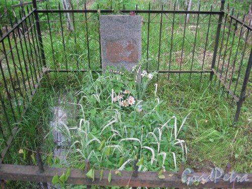 Лен. обл., Гатчинский р-н, пос. Сусанино, Вокзальная сторона. Кладбище. Одно из безымянных захоронений. Фото 3 июня 2015 г.