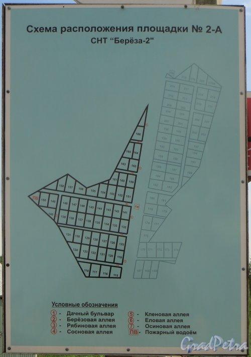 Лен. область, Ломоносовский р-н, деревня Таментонт, план СНТ «Берёза-2». Фото 22 июня 2016 года.