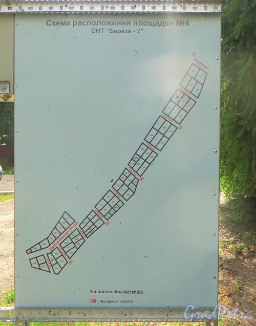 Лен. область, Ломоносовский р-н, деревня Таментонт, СНТ «Берёза-2». План площадки №4. Фото 22 июня 2016 года.