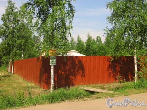 Лен. область, Ломоносовский р-н, деревня Таментонт, СНТ «Буран», участок №3. Фото 22 июня 2016 года.