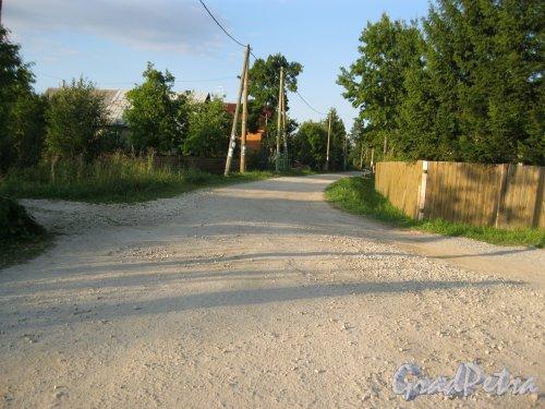 Лен. обл., Гатчинский р-н, дер. Красницы. Улица в деревне. Фото 10 августа 2015 г.